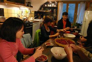 Après la cueillette du cynorhodon, préparation des fruits pour la confection des confitures.