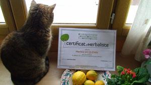 Diplôme de Martine herbaliste certifiée par l'école lyonnaise de plantes médicinales