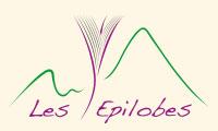 logo Les épilobes : Chambre d'hôte-Herboristerie