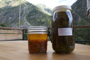 Fleurs qui macèrent dans de l'huile d'olive bio.